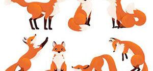 Картинка к слову лиса