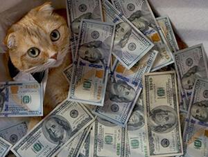 Картинка к слову деньги
