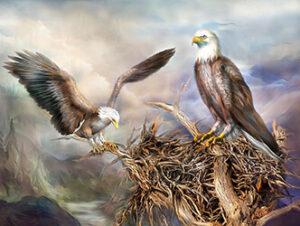 Картинка к слову орел и орлята